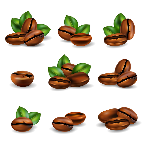 600x600 Coffee Beans Set Realistic Vector Free Download