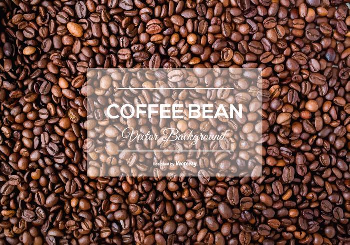 700x490 Coffee Beans Free Vector Art