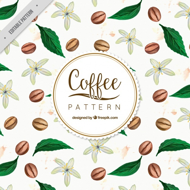626x626 Coffee Beans Vectors, Photos And Psd Files Free Download