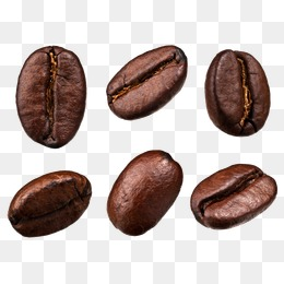 260x260 Cocoa Bean Png, Vectors, Psd, And Clipart For Free Download Pngtree
