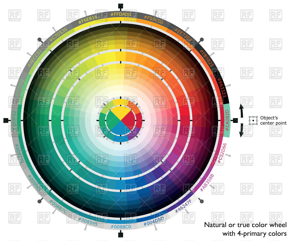 1200x1000 Natural Or True Color Wheel With 4 Primary Colors Vector Image