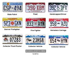 Colorado License Plate Vector