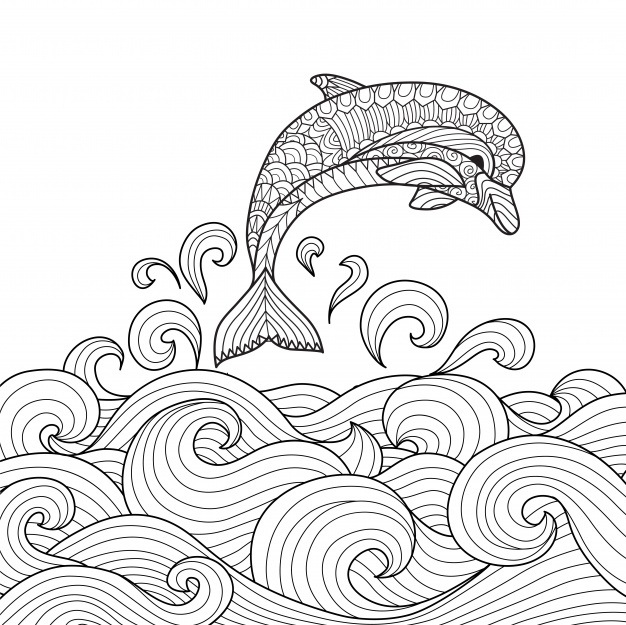 626x625 Colouring Book Vectors, Photos And Psd Files Free Download