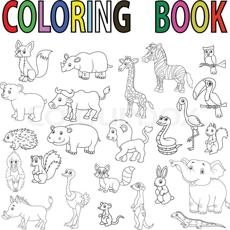 798x800 Vector Illustration Of Wild Animal Cartoon Coloring Book Stock