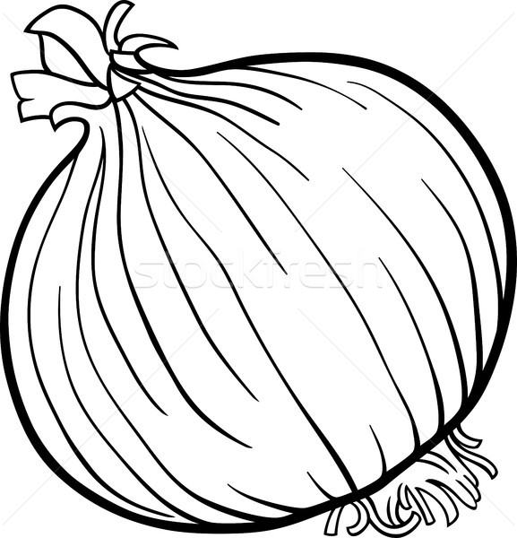 577x600 Onion Vegetable Cartoon For Coloring Book Vector Illustration