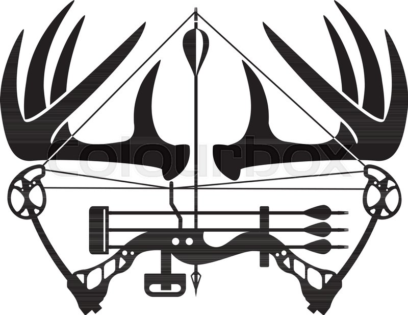 800x617 Whitetail Buck Antlers And Compound Bow Stock Vector Colourbox