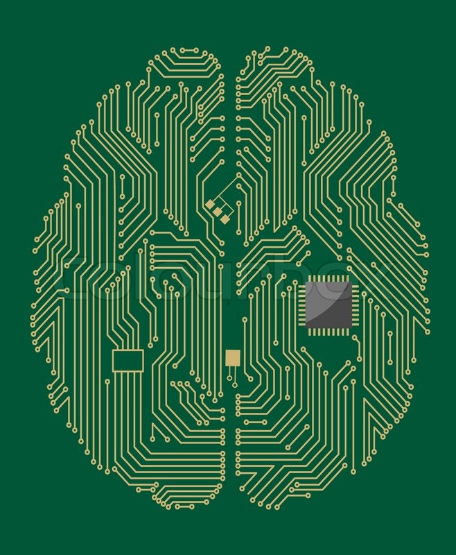 658x800 Motherboard Brain With Computer Chip Stock Vector Colourbox