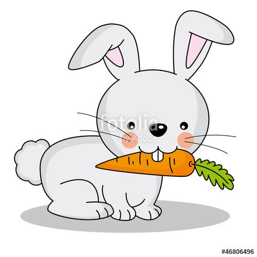 500x500 Conejo Comiendo Una Zanahoria Stock Image And Royalty Free Vector