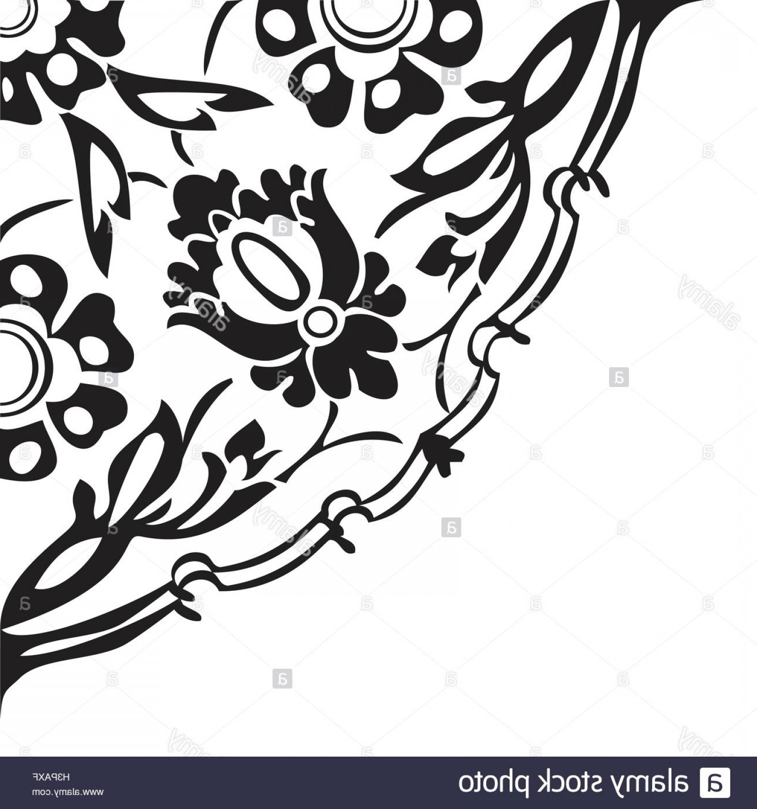 1560x1668 Stock Photo Black And White Round Floral Border Corner Abstract