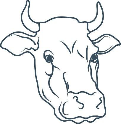 409x421 Cow,cartoon Cow,cow Drawing,cow Head Vector Illustration Premium