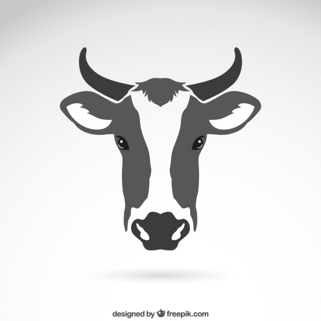 626x626 Cow Vectors, Photos And Psd Files Free Download
