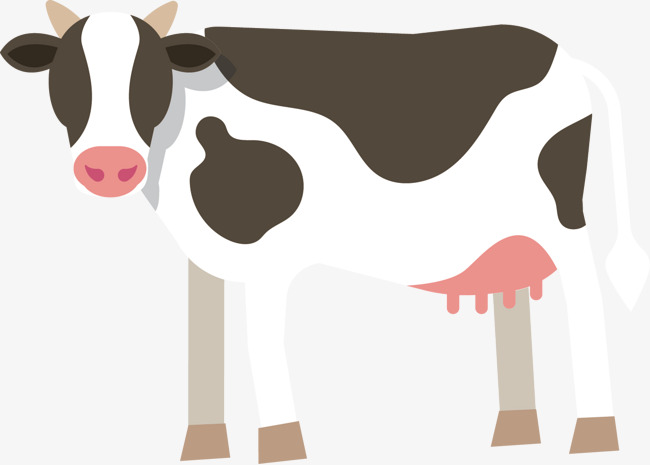 650x465 Cow Vector, Dairy Cow, Decoration Png And Vector For Free Download
