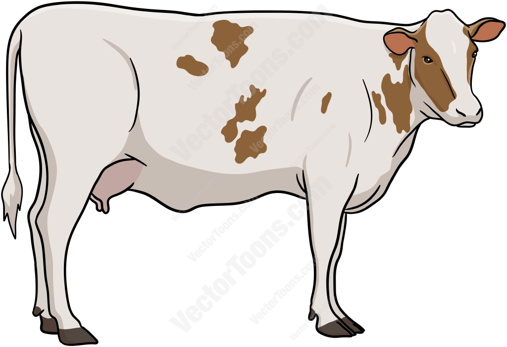 1024x701 Cattle Clipart Vector
