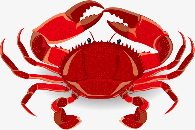 650x434 Crab Vector Png Images Vectors And Psd Files Free Download On