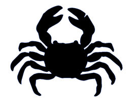 270x210 I Need Some Graphic Design For A Crab Vector Freelancer