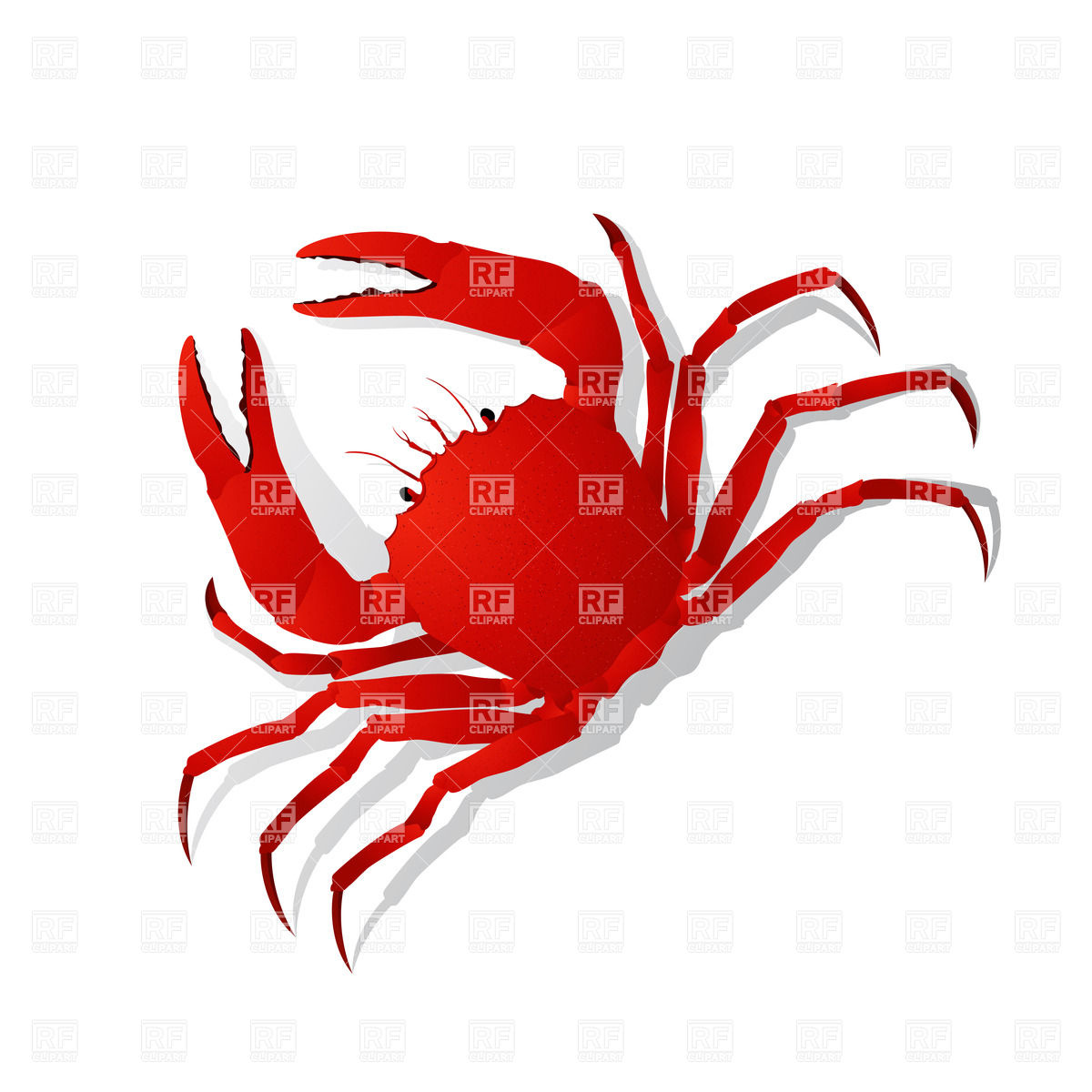 1200x1200 Red Crab Vector Image Vector Artwork Of Plants And Animals
