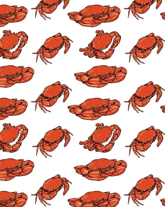 570x713 Crab Vector Free Crab Pattern Including Seamless Hand Drawn Crab