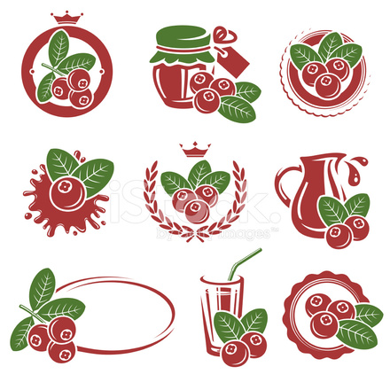 440x440 Cranberry Vector Stock Vector