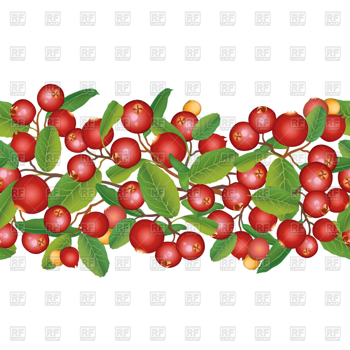 1200x1200 Cranberry Seamless Pattern Vector Image Vector Artwork Of