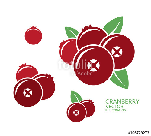 500x453 Cranberry. Icon Set Stock Image And Royalty Free Vector Files On