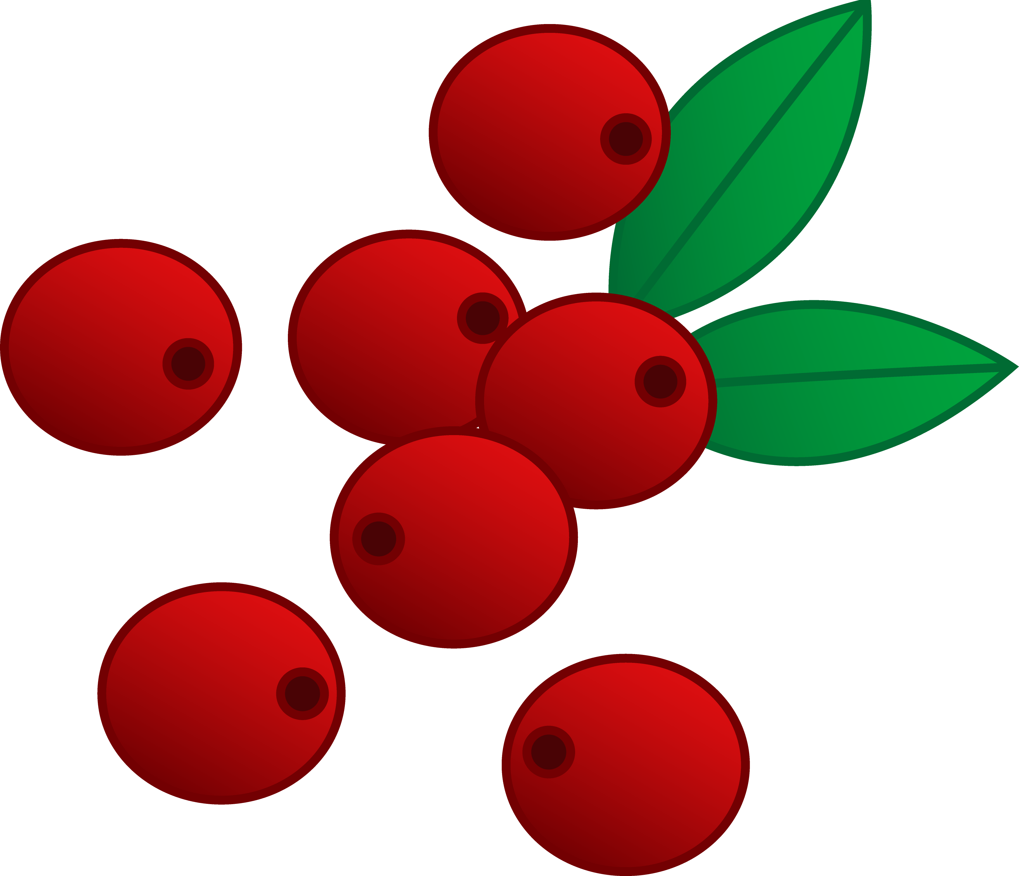 3345x2877 Red Cranberries Vector Art