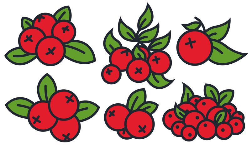 804x490 Vector Cranberry Icon Set