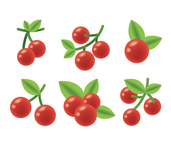 572x490 Cranberry Free Vector Art