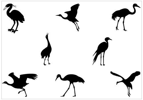 500x350 Birds Vector Graphics Archives