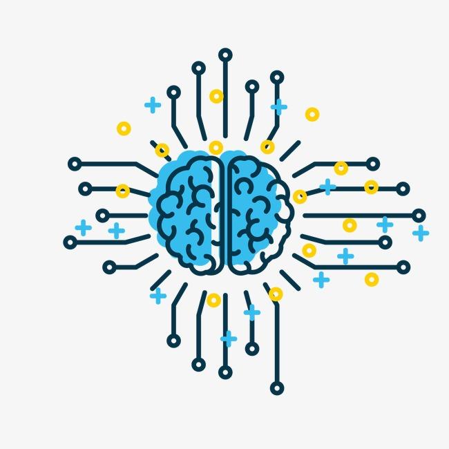 650x650 Creative Brain Pattern, Brain Vector, Pattern Vector, Brain Png