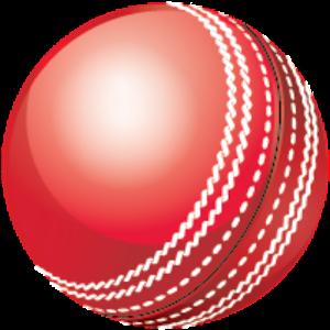 300x300 Cricket Ball Vector