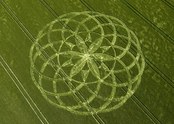 600x429 Crop Circle