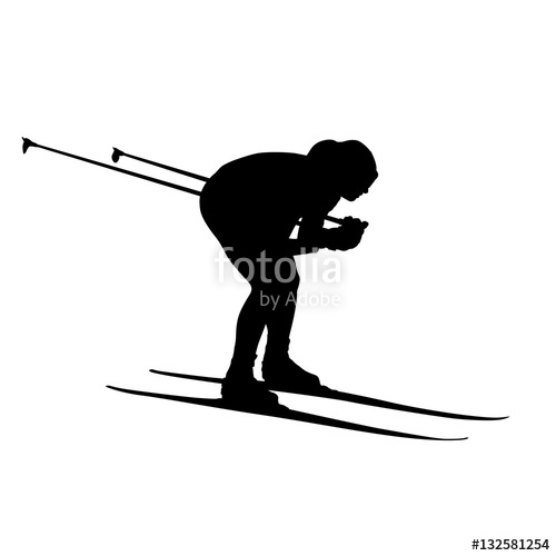 500x500 Cross Country Skiing, Downhill. Vector Silhouette Stock Image And