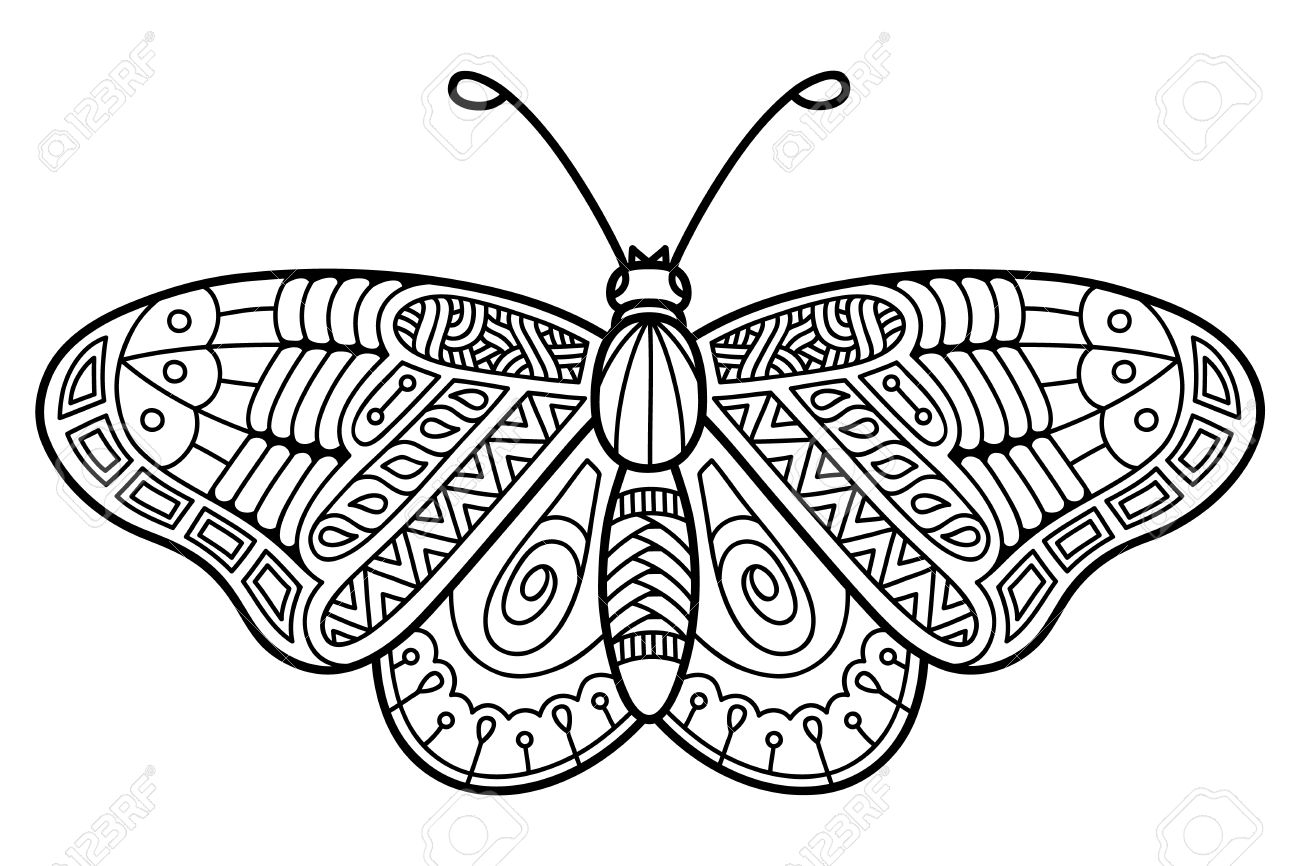 1300x866 Cute Butterfly Drawing Cute Butterfly Vector Illustration Of Cute