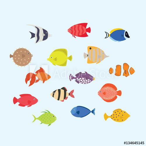 500x500 Cute Fish Vector Illustration Icons Set. Tropical Fish, Sea Fish
