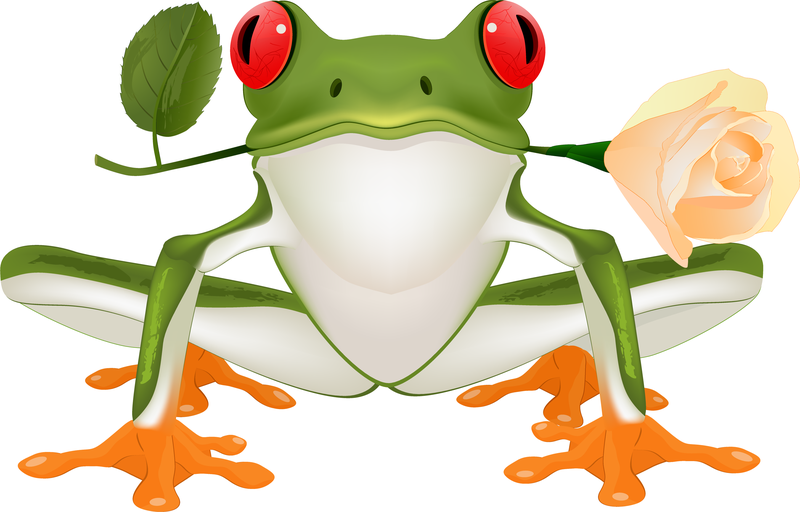 Cute Frog Vector