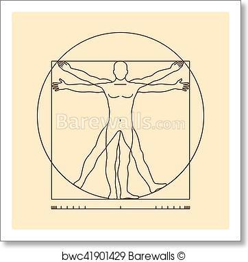Da Vinci Man Vector