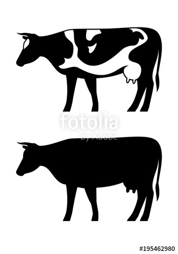 350x500 Cow Vector Silhouette Set Isolated On White Background. Cow Icon