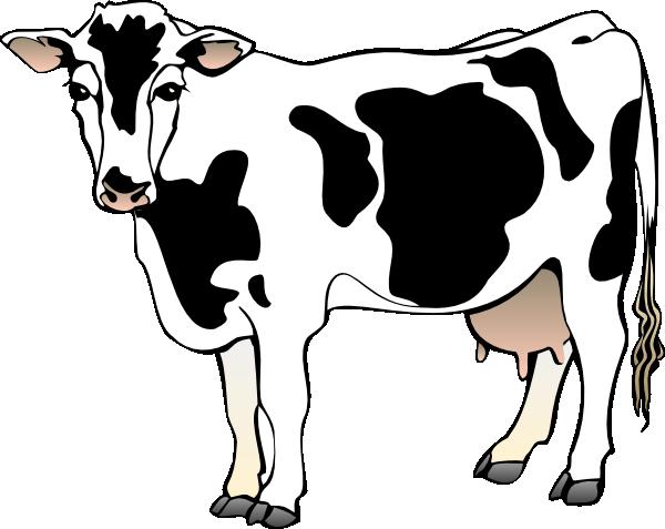 600x477 Dairy Cow Clip Art
