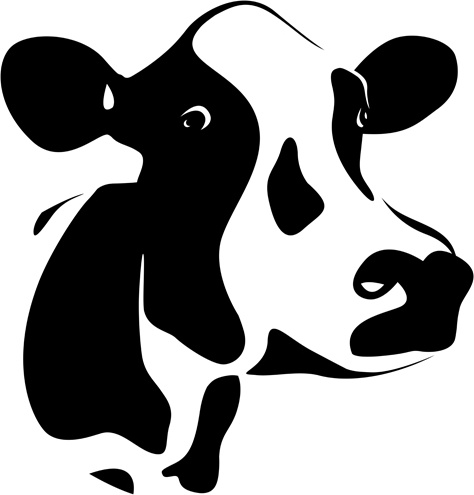 474x495 Different Dairy Cow Design Vector Graphics Free Vector In