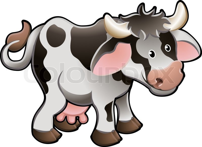 800x583 Vector Illustration Of A Cute Dairy Cow