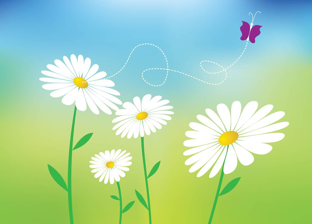 1024x735 Daisy Vectors Vector Art Amp Graphics