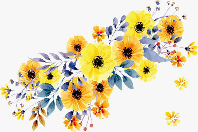 650x435 Beautiful Watercolor Yellow Daisy, Vector Png, Daisy, Yellow Daisy