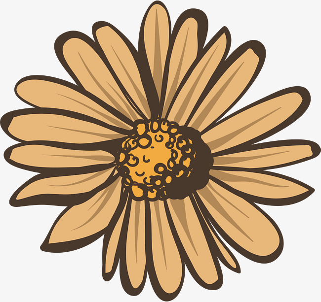 650x613 Beige Autumn Daisy, Vector Png, Daisy, Autumn Daisy Png And Vector
