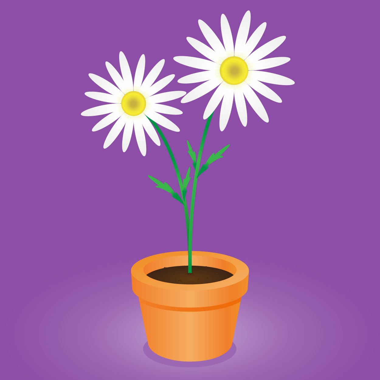 1250x1250 Daisy Flower Pot Vector Illustration Of An Orange Clay Flower