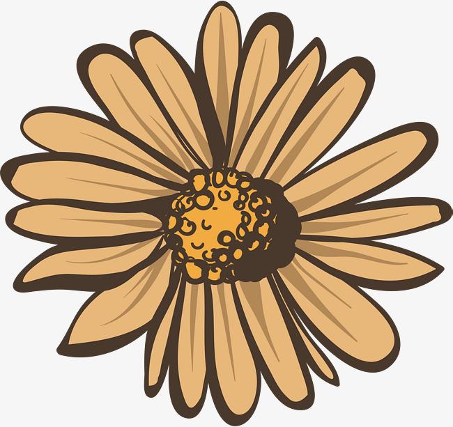 650x613 Beige Autumn Daisy, Vector Png, Daisy, Autumn Daisy Png And Vector