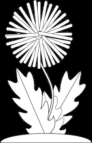 Dandelion Vector Png