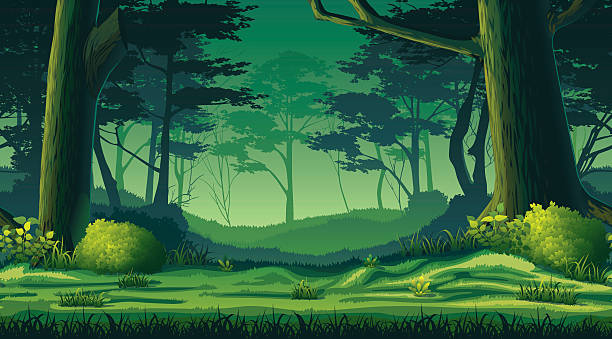 612x339 Collection Of Dark Forest Background Clipart High Quality