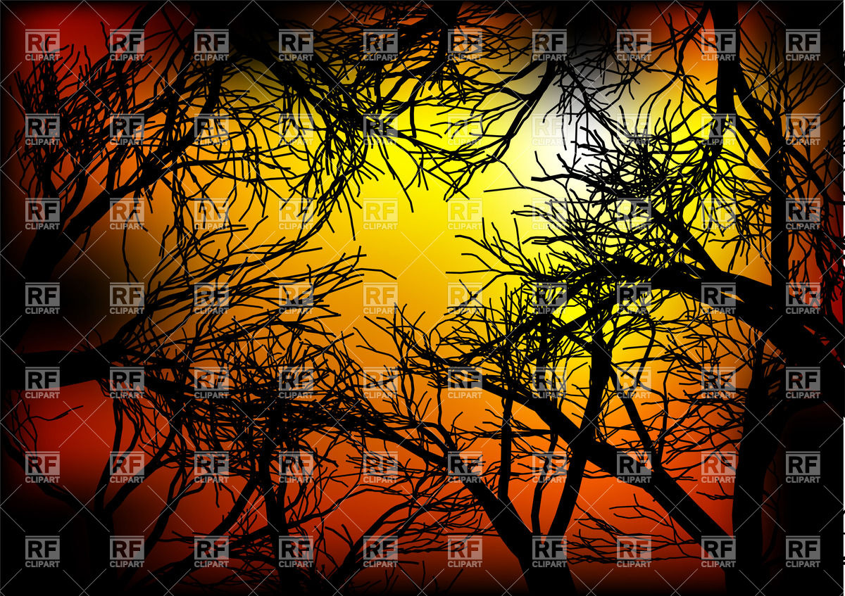 1200x847 Dark Forest On The Sunset Vector Image Vector Artwork Of
