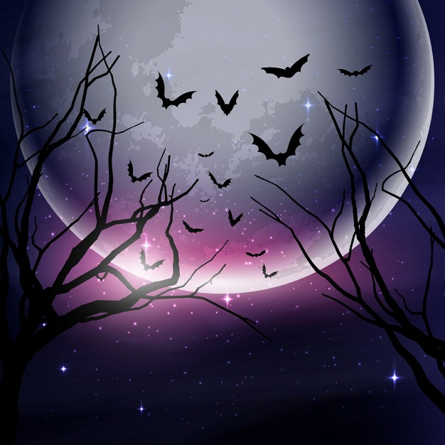 626x626 Dark Forest With A Full Moon For Halloween Vector Free Download