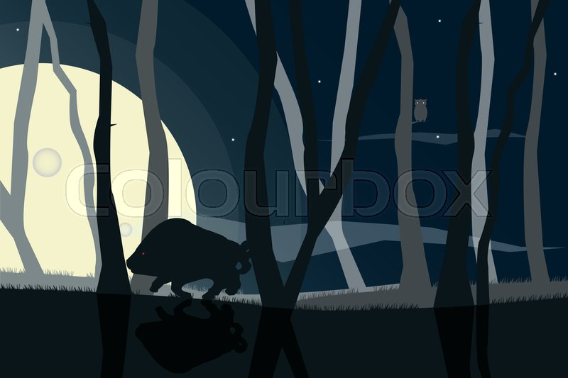 800x533 Wildlife Silhouettes Scene With Boar And Owl